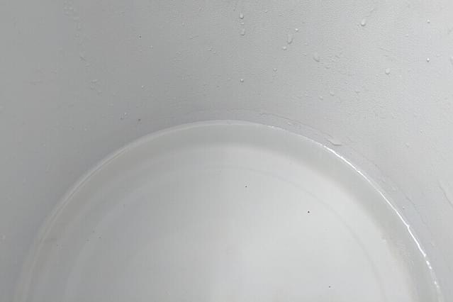 Water geven aan de Sansevieria in Leca