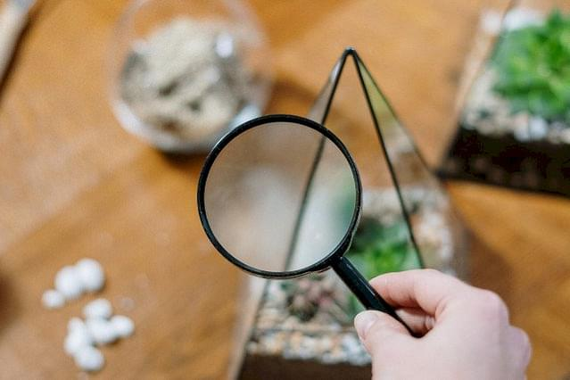 Magnifier with plants
