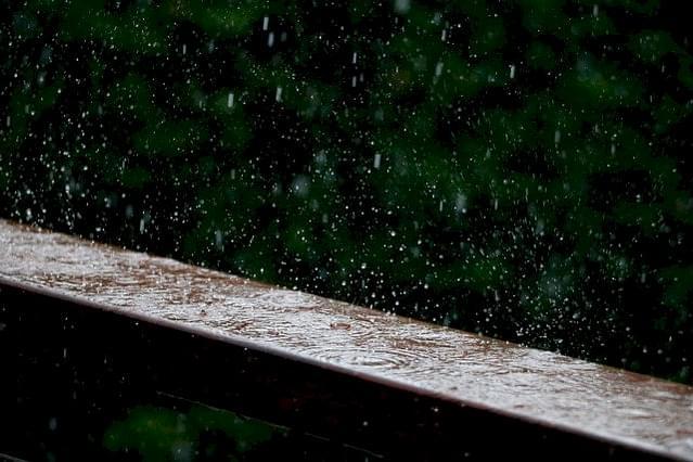 Rain on wooden fence