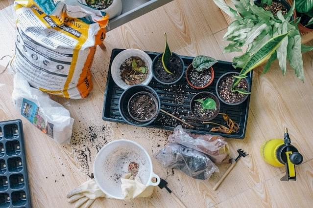 Planten verpotten