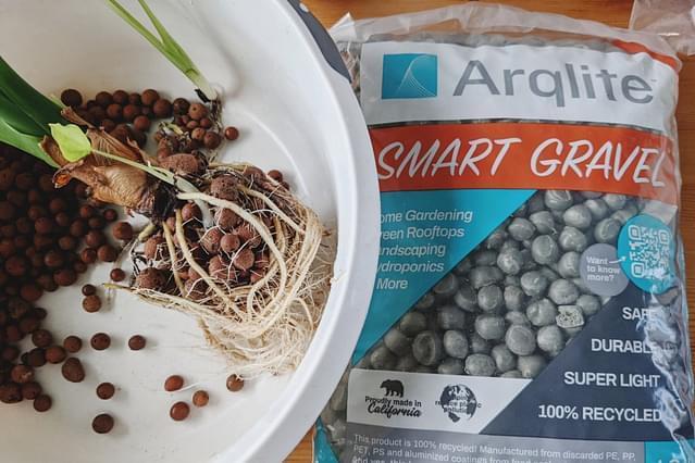 Growing your houseplants with Smart Gravel
