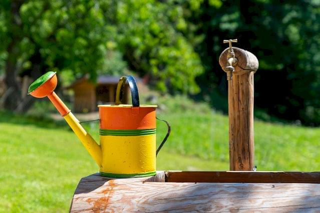 Watering can in the sun