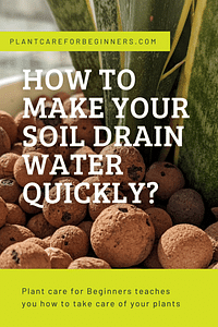 How to make your soil drain water quickly?