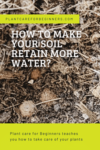 How to make your soil retain more water?
