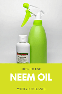 How to use Neem Oil with plants